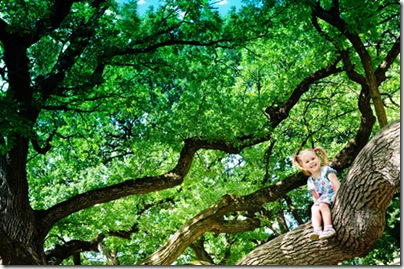 Happy cute girl sitting on branch huge tree
