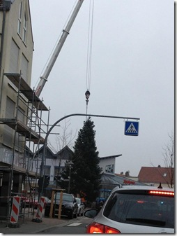 Transport_Weihnachtsbaum