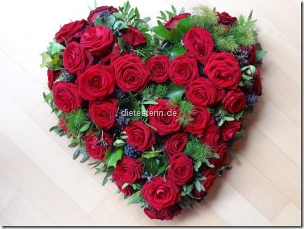 Herzblogger 2