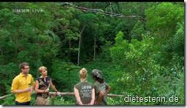 Dschungelprüfung 7