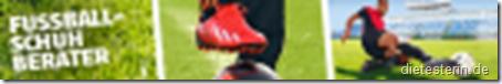SportScheck Banner